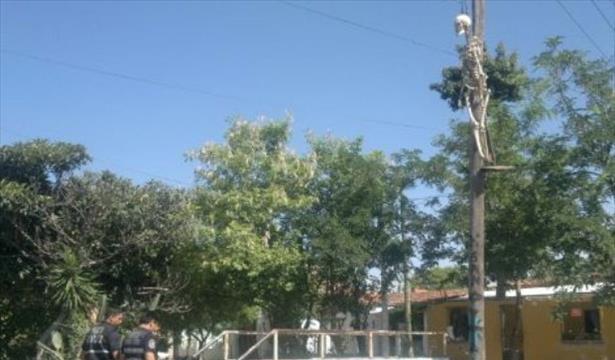 Esqueleto humano aparece colgado de un poste de luz | Te Leemos Las ...